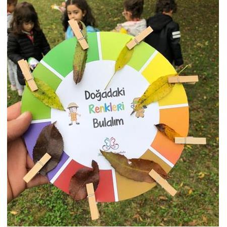 Dogadaki Renkleri Bulma Etkinligi Renk Cemberi Kalibi Okul